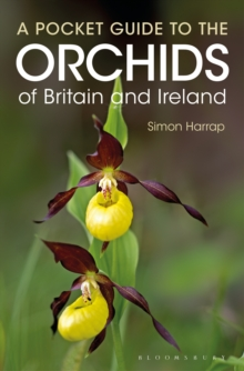 Pocket Guide to the Orchids of Britain and Ireland, Paperback / softback Book