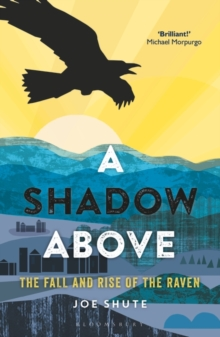 A Shadow Above : The Fall and Rise of the Raven, Paperback / softback Book
