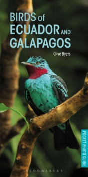 Birds of Ecuador and Galapagos, Paperback / softback Book