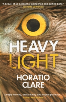 Heavy Light : A Journey Through Madness, Mania and Healing, EPUB eBook