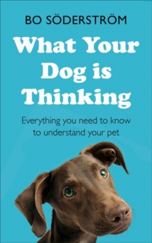 What Your Dog Is Thinking : Everything you need to know to understand your pet, Paperback / softback Book