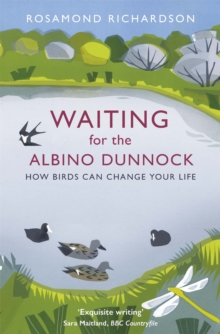 Waiting for the Albino Dunnock : How birds can change your life, Paperback Book