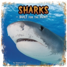 Sharks : Built for the Hunt, Paperback / softback Book