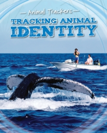 Tracking Animal Identity, Paperback / softback Book