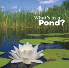 What's in a Pond?, Hardback Book