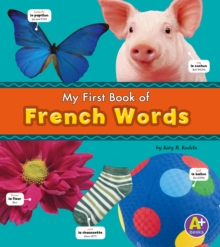 French Words, Paperback Book