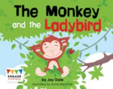 The Monkey and the Ladybird, Multiple copy pack Book
