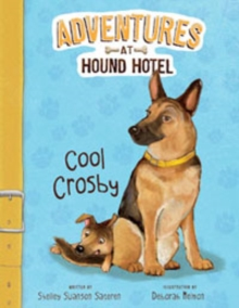 Adventures at Hound Hotel, Pack B of 4, Paperback Book