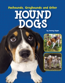 Foxhounds, Greyhounds and Other Hound Dogs, Hardback Book