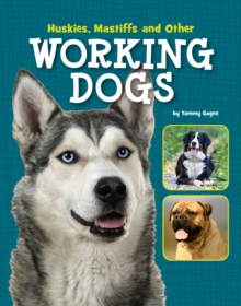 Huskies, Mastiffs and Other Working Dogs, Paperback / softback Book