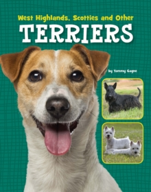West Highlands, Scotties and Other Terriers, Paperback Book