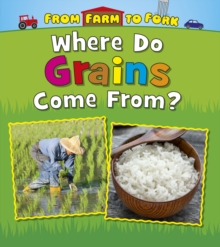 Where Do Grains Come From?, Hardback Book