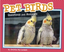 Pet Birds : Questions and Answers, Paperback / softback Book