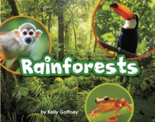 Rainforests, Paperback / softback Book