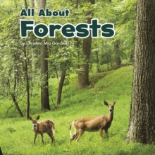 All About Forests, Paperback / softback Book