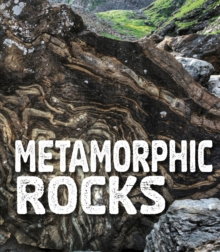 Metamorphic Rocks, Paperback / softback Book