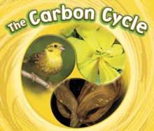 The Carbon Cycle, Paperback / softback Book