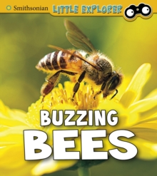 Buzzing Bees, Paperback / softback Book