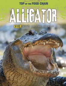 Alligator : Killer King of the Swamp, Paperback / softback Book