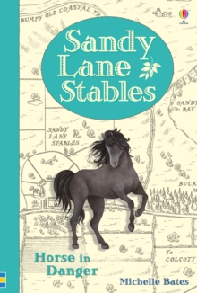 Sandy Lane Stables : Horse in Danger, Hardback Book