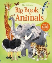 Big Book Of Big Animals, Hardback Book