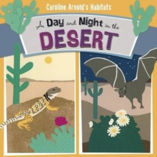 A Day and Night in the Desert, Paperback / softback Book