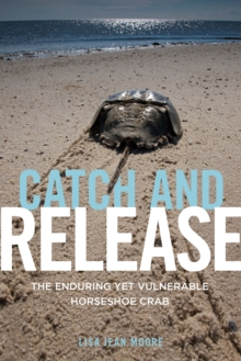 Catch and Release : The Enduring Yet Vulnerable Horseshoe Crab, Paperback / softback Book
