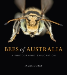 Bees of Australia : A Photographic Guide, Paperback / softback Book