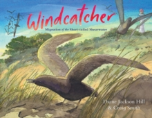 Windcatcher : Migration of the Short-tailed Shearwater, Hardback Book