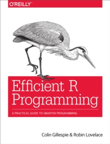 Efficient R Programming : A Practical Guide to Smarter Programming, EPUB eBook