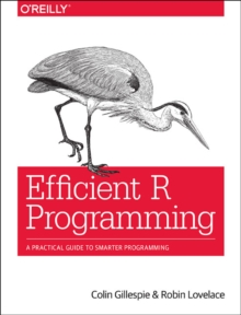Efficient R Programming, Paperback / softback Book