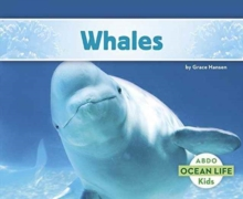 Whales, Paperback Book