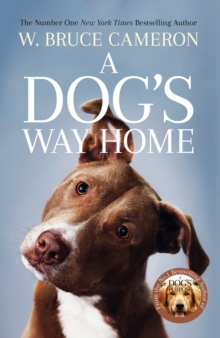 A Dog's Way Home : The Heartwarming Story of the Special Bond Between Man and Dog, Paperback / softback Book