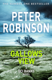 Gallows View, Paperback Book