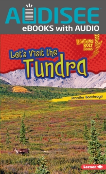 Let's Visit the Tundra, EPUB eBook