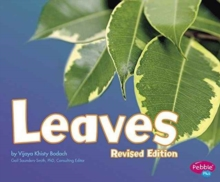 Leaves, Paperback Book
