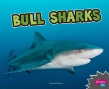 Bull Sharks, Paperback / softback Book
