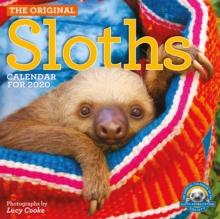 2020 Sloths Wall Calendar, Calendar Book