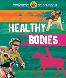 Human Body, Animal Bodies: Healthy Bodies, Paperback / softback Book