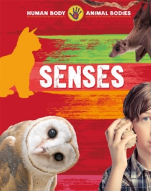 Senses, Paperback / softback Book