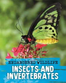 Endangered Wildlife: Rescuing Insects and Invertebrates, Hardback Book