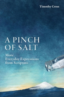 A Pinch of Salt : More Everyday Expressions from Scripture, Paperback / softback Book