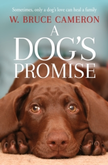 A Dog's Promise, Paperback / softback Book