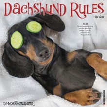 Dachshund Rules 2020 Wall Calendar (Dog Breed Calendar), Calendar Book