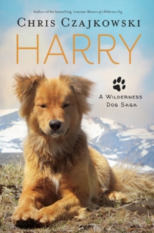 Harry : A Wilderness Dog Saga, Paperback / softback Book