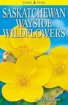 Saskatchewan Wayside Wildflowers, Paperback Book