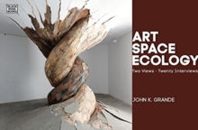 Art, Space, Ecology - Two Views-Twenty Interviews, Paperback / softback Book