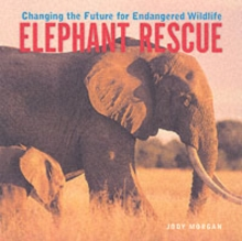 Elephant Rescue : Changing the Future for Endangered Wildlife, Paperback / softback Book