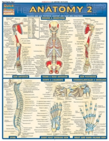 Anatomy 2 - Reference Guide (8.5 x 11) : a QuickStudy Reference Tool, Fold-out book or chart Book
