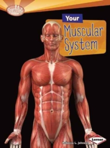 Your Muscular System, Paperback / softback Book